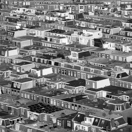 Daken van Den Haag